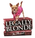 Legally Blonde – The Musical books and dog