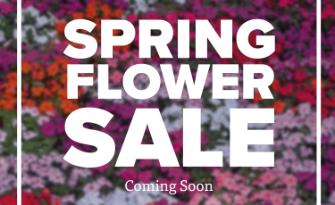 Kensington PTA Flower Fundraiser