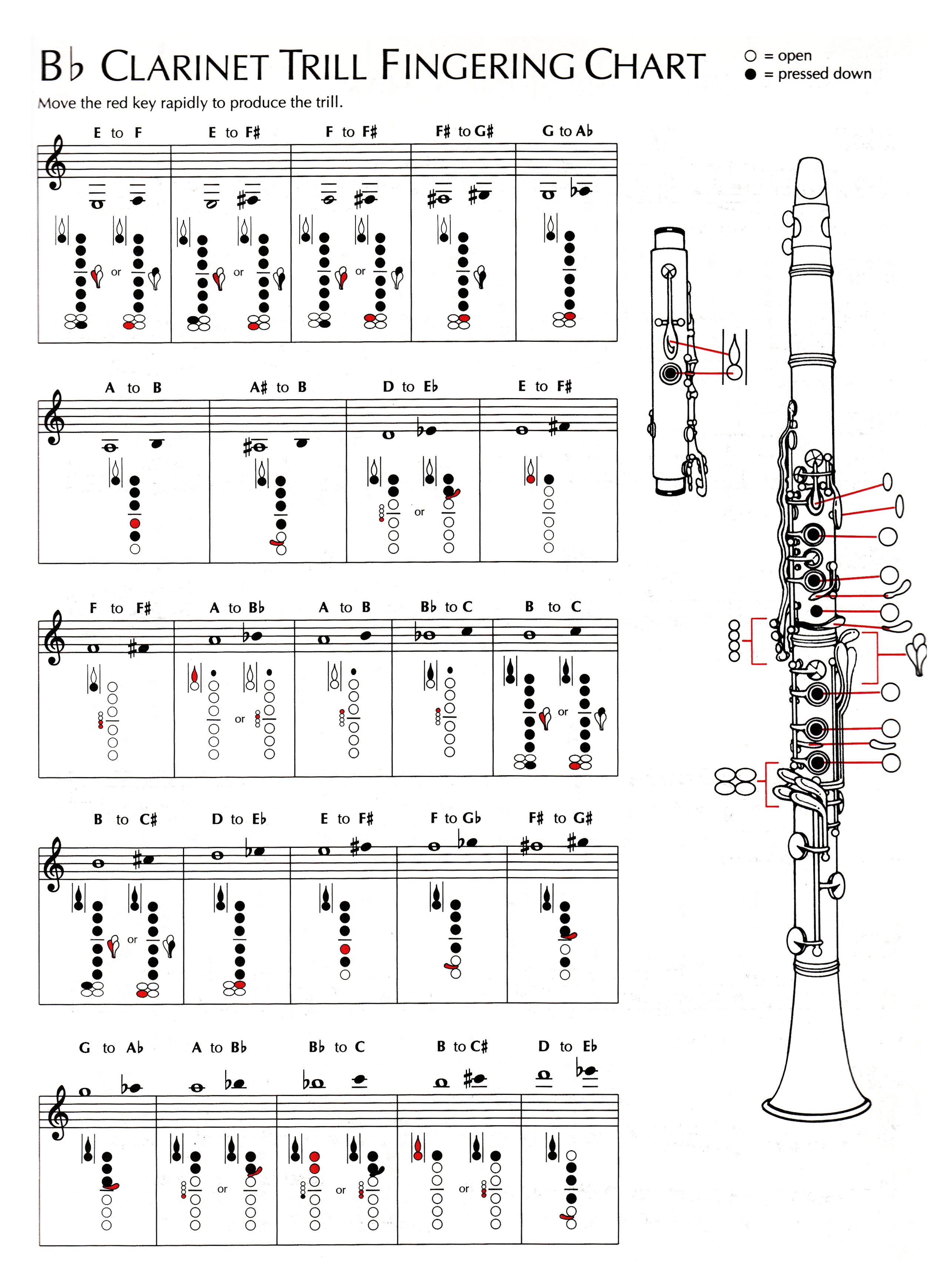 E Flat Clarinet Finger Chart http://www.rrcs.org/Instrument%20Resources.aspx