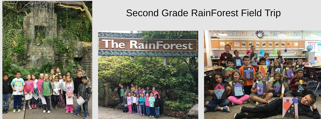 Second Grade RainForest Field Trip