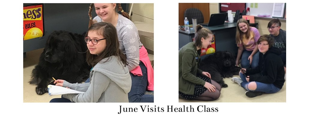 June the service dog visits students in class