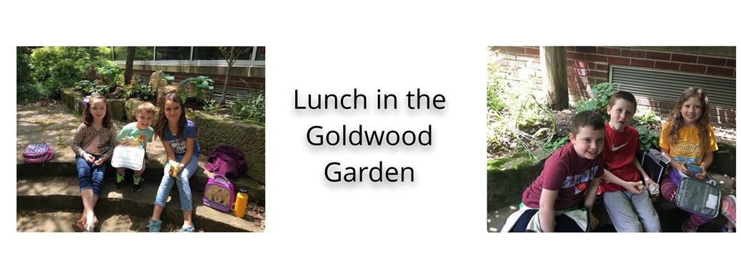 Students eat lunch in the Goldwood Garden