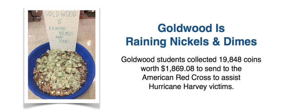 "Nickels and dimes go  into a kiddie pool for the fundraiser ""Goldwood is Raining Nickels and Dimes"