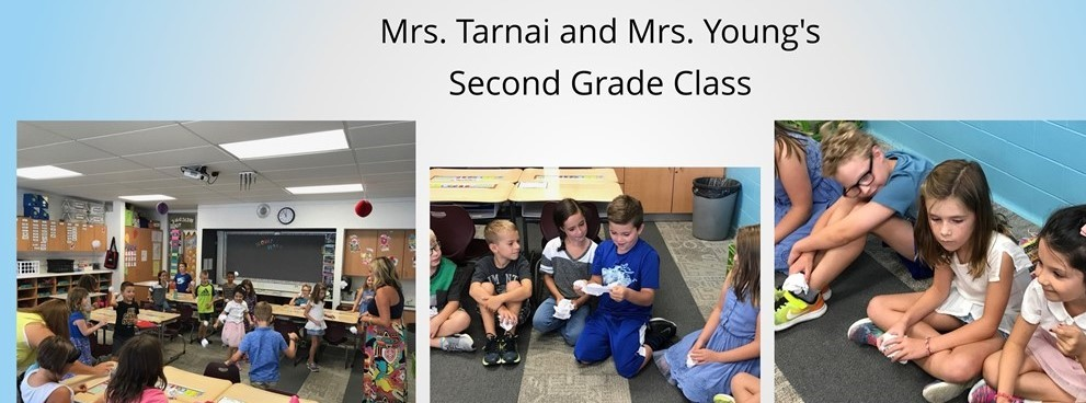 Mrs. Tarnai and Mrs Young's Second Grade Class