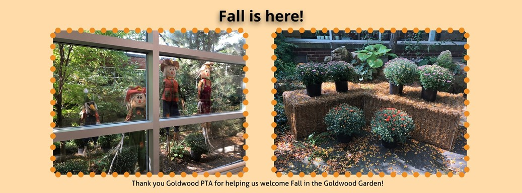 Thank you to the Goldwood PTA for welcoming fall to the Goldwood Garden!
