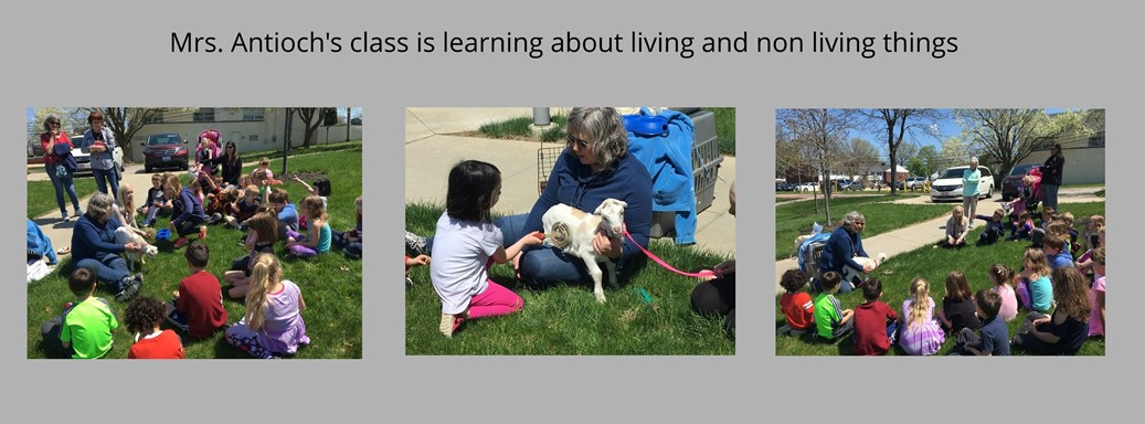 Mrs. Antioch's Class Studies Living and Non Living Things
